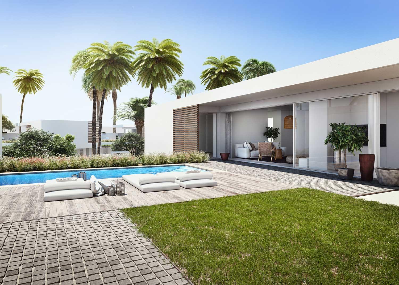 Design & architectural visualisation Lemon Tree